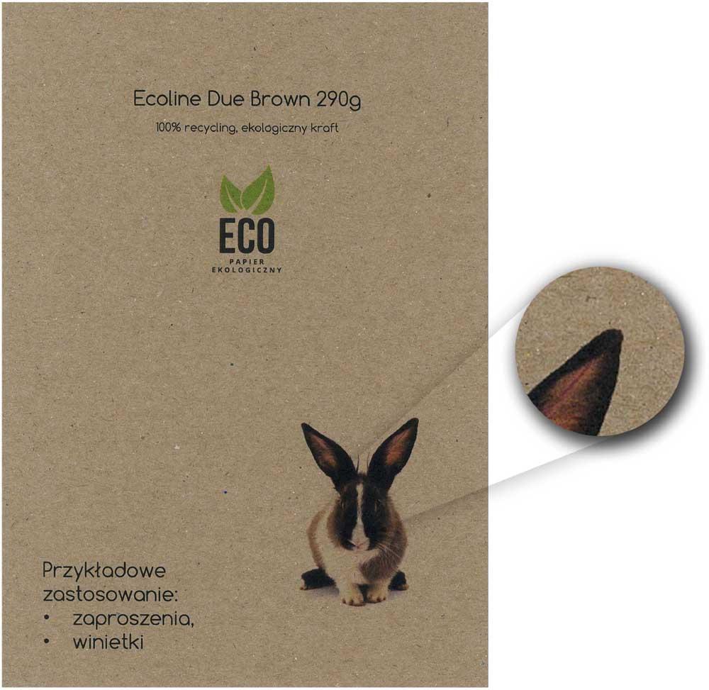 druk online wzornik ekologicznego papieru do zaproszeń Ecoline Due Brown 290g
