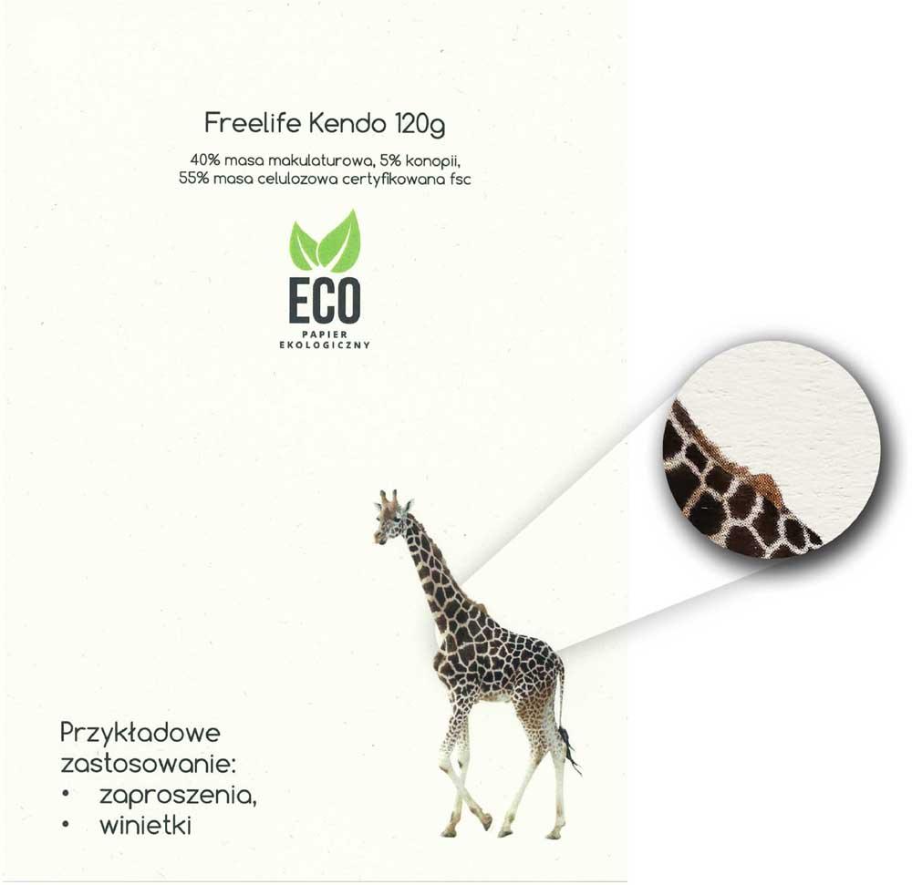 druk online wzornik ekologicznego papieru do winietek, zaproszeń Freelife Kendo 120g