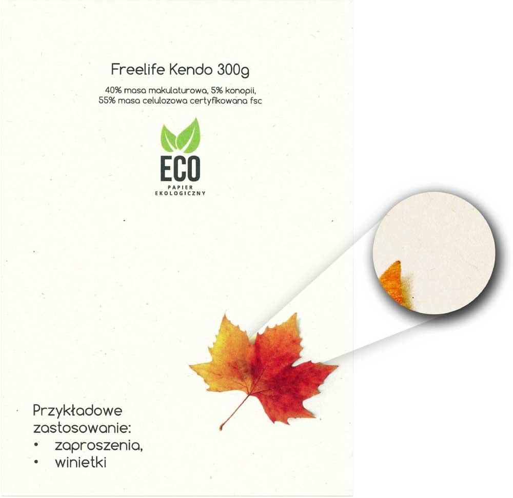 drukarnia online wzornik ekologicznego papieru Freelife Kendo 300g